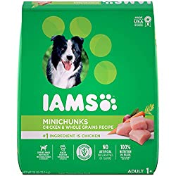 Best Dog Foods 2020 – Top 10 Best Wet and Dry Dog Foods